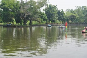 Sewa Mobil Bogor Danau Situ Gede