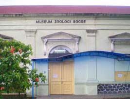 Sewa Mobil Bogor Museum Zoologi